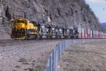 SLN 5 behind NYSW and NS power